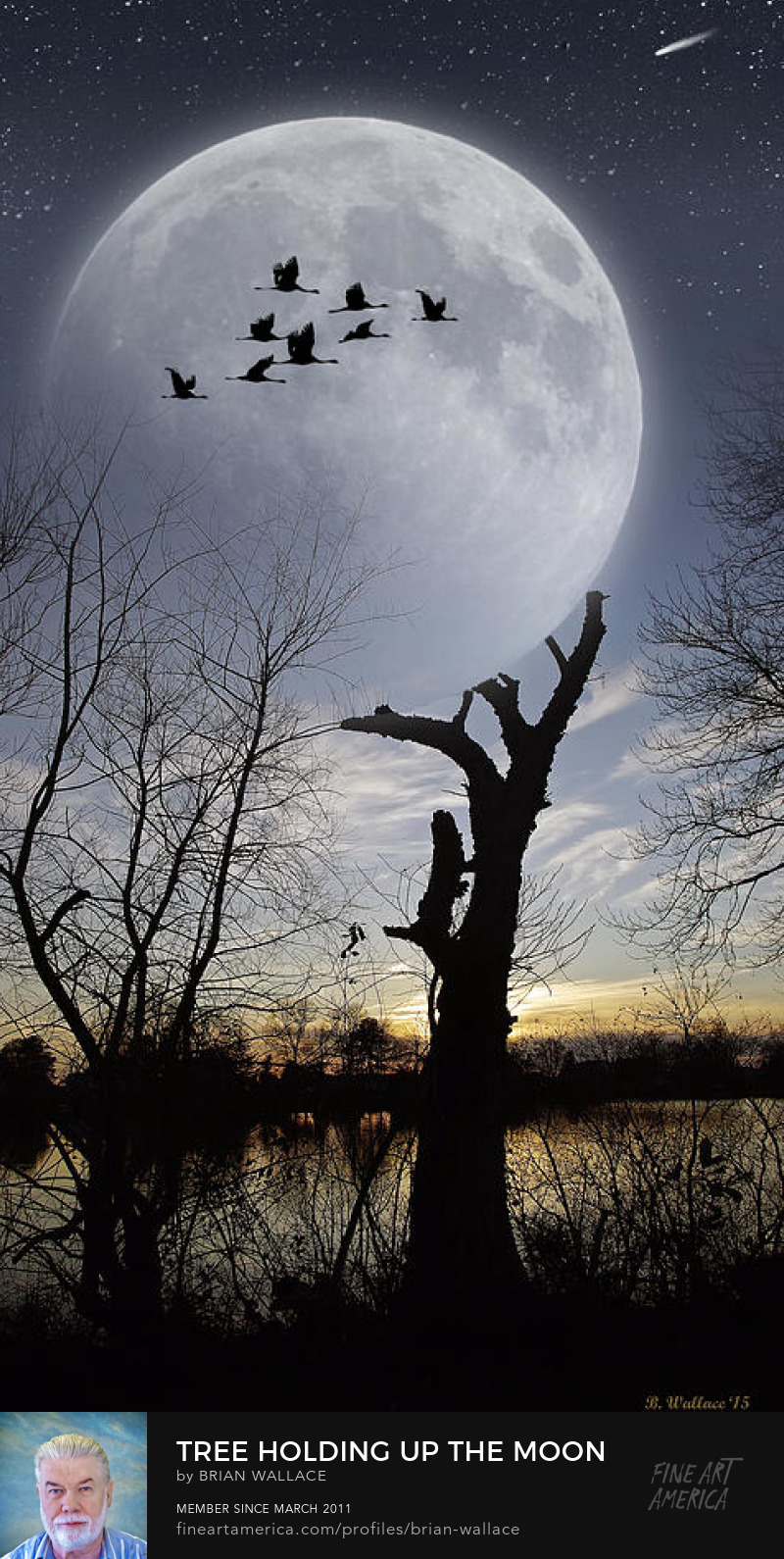 Tree Holding Up The Moon by Brian Wallace
