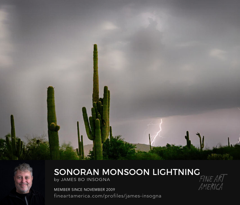 Sonoran Monsoon Lightning Thunderstorm Delight Art Prints