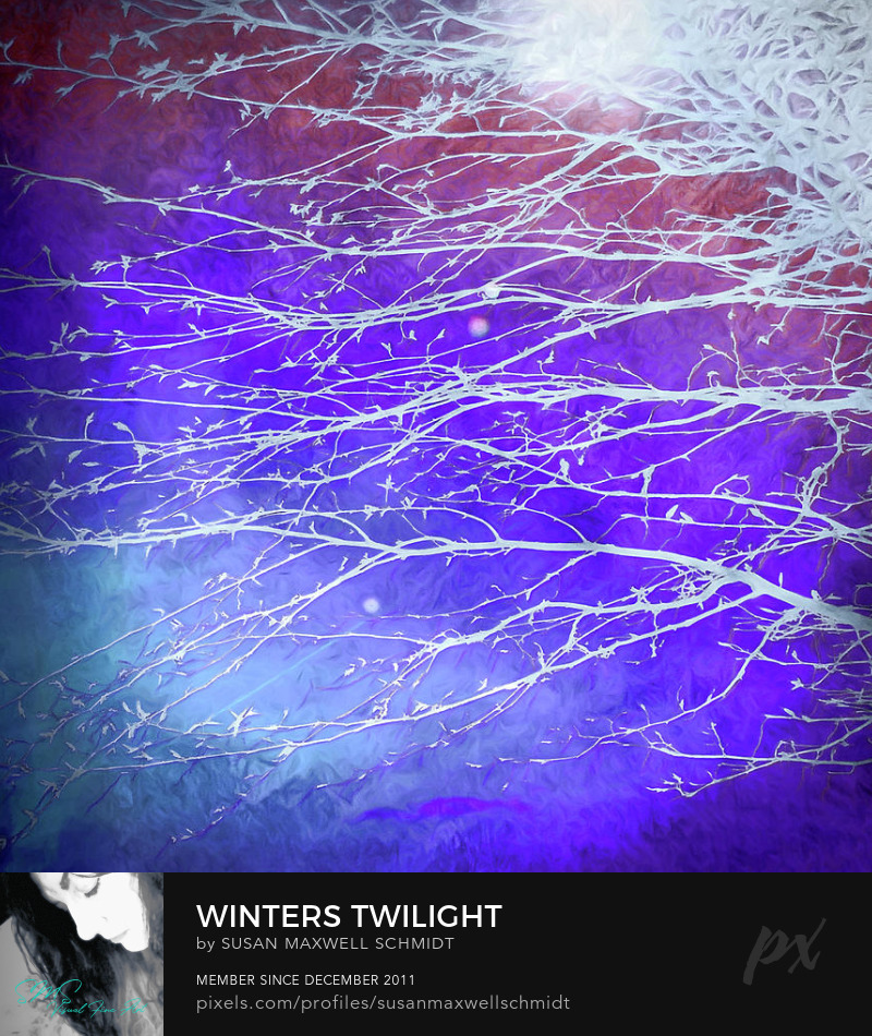 Winters Twilight Art Print by Susan Maxwell Schmidt