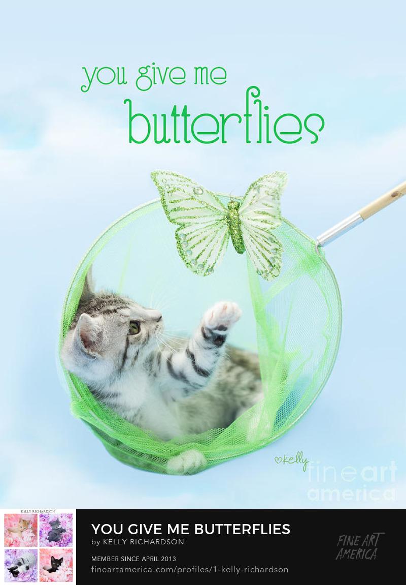 Valentine's Day Kitten Poster