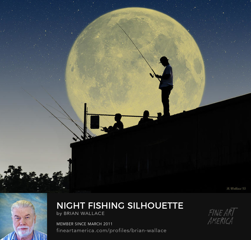Night Fishing Silhouette by Brian Wallace