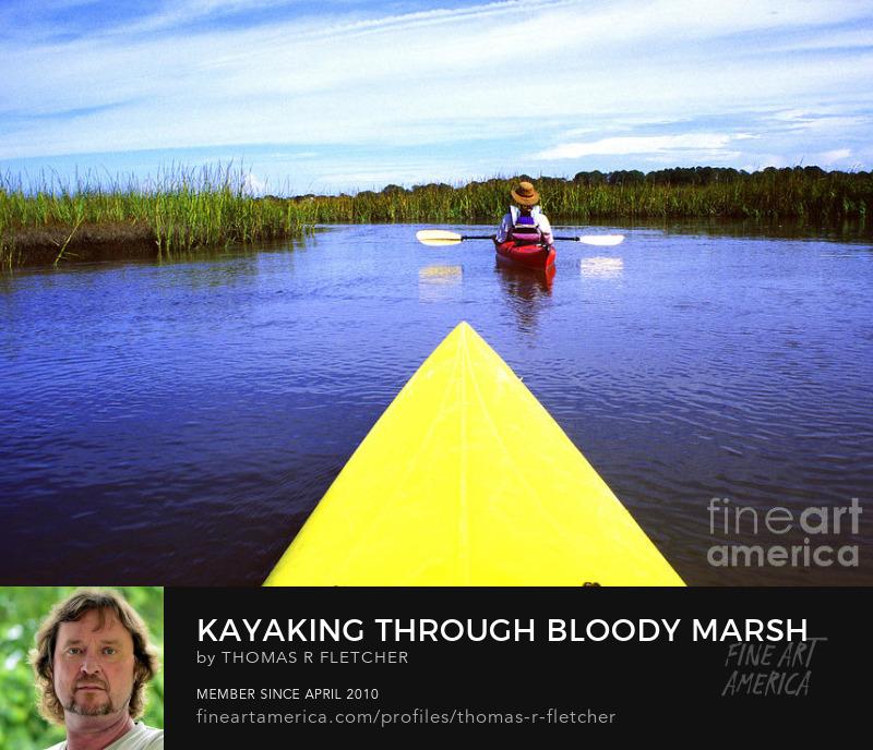 Sell Art Online Sea Kayaking through Bloody Marsh, Georgia's Golden Isles