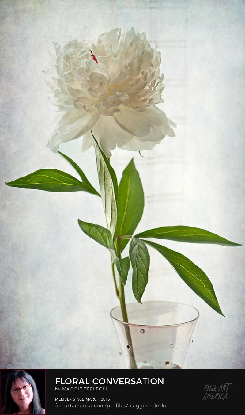 Floral Conversation by Maggie Terlecki