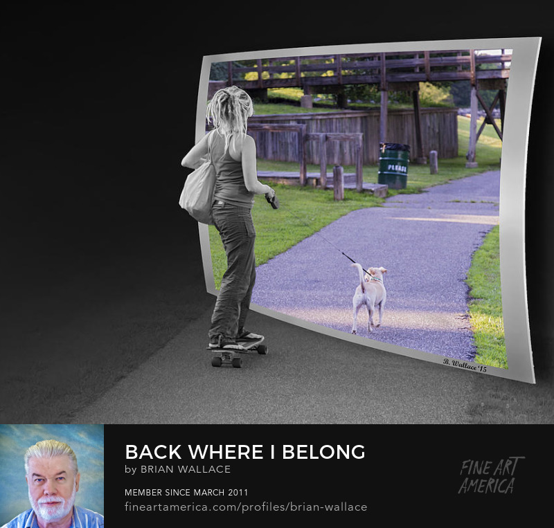 Back Where I Belong by Brian Wallace