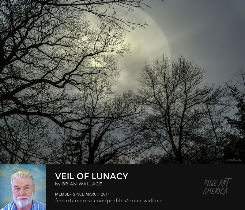 Veil Of Lunacy by Brian Wallace