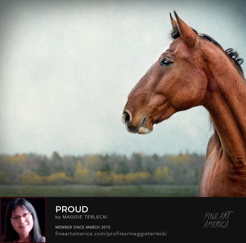 Proud by Maggie Terlecki