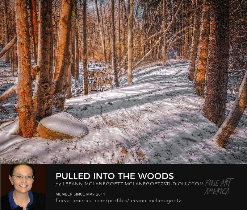 McLaneGoetzStudioLLC.com Print Pulled into the woods Winter in Michigan