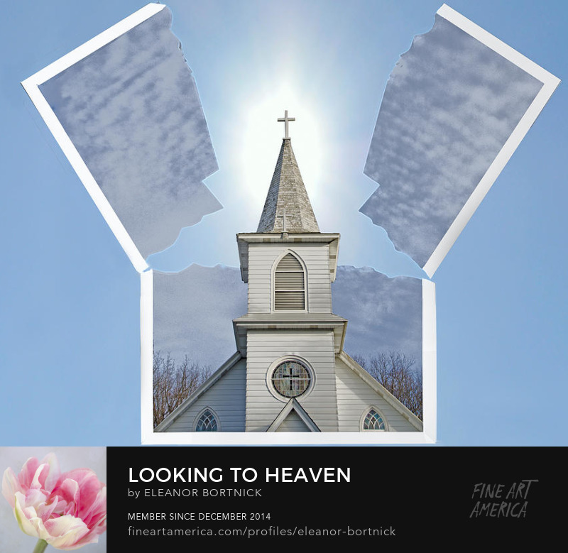 Looking to Heaven by Eleanor Bortnic