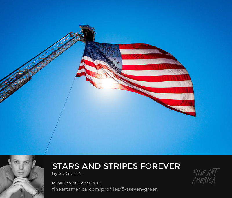 Stars and Stripes Forever by Steven Green