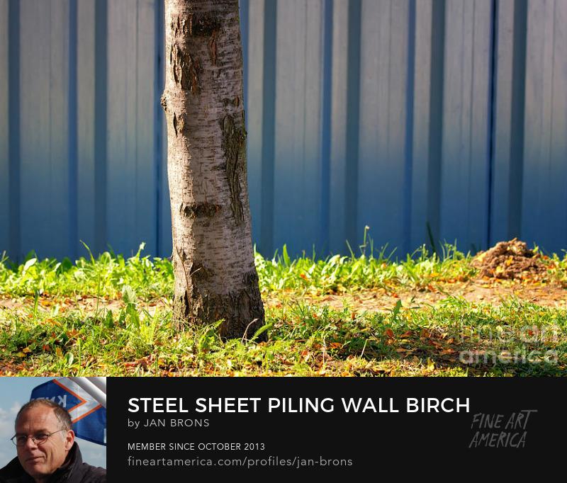 Steel sheet piling wall birch tree grass - Art Prints