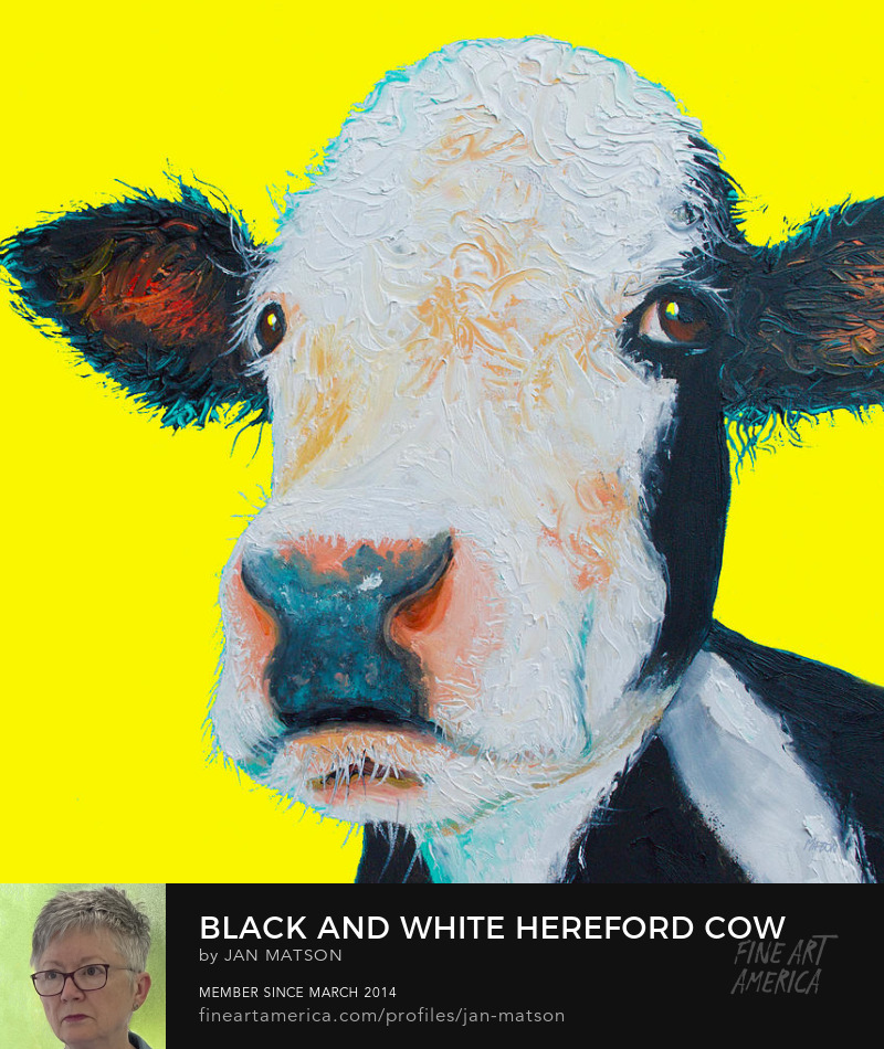 An oil painting of a black and white cow on a yellow background.