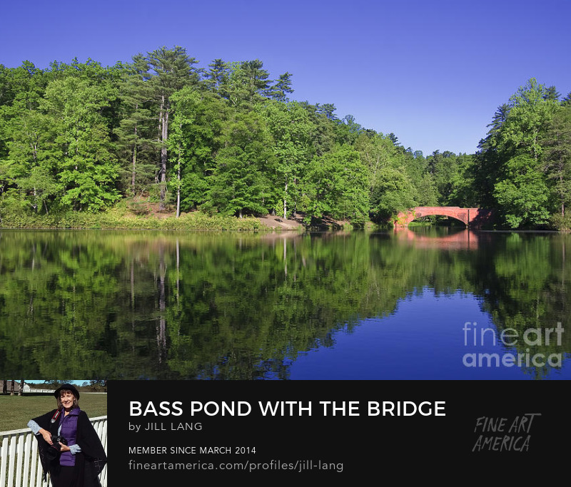 Bass Pond Bridge