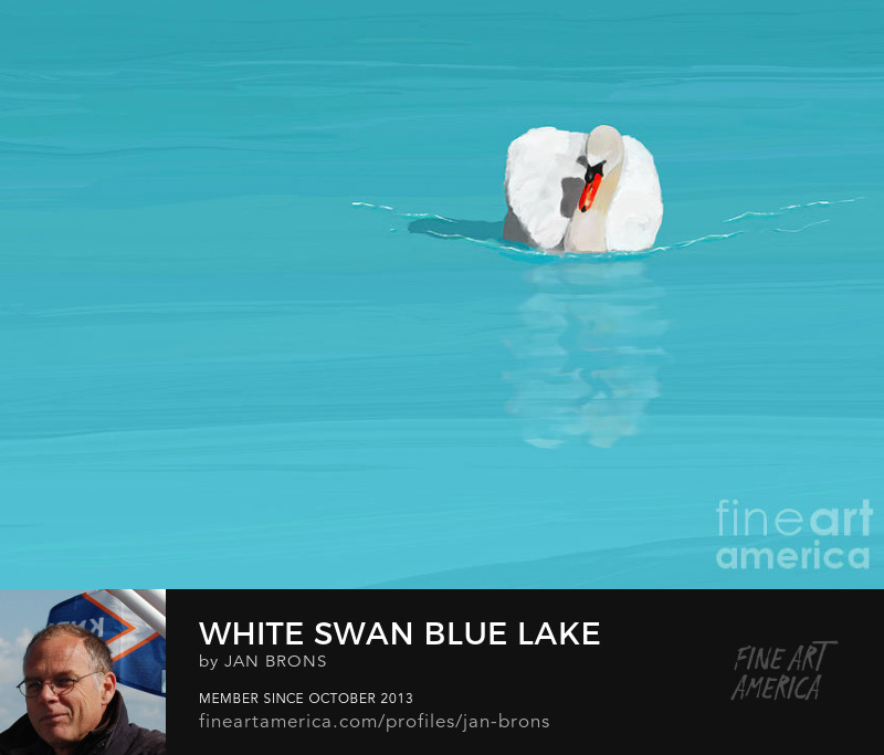 White Swan Blue Lake - Art Prints