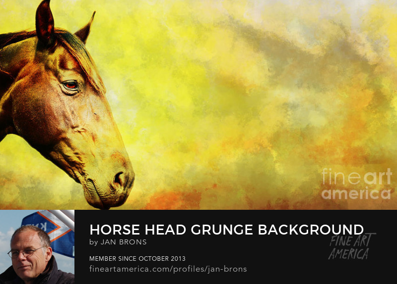 Horse head grunge background - Art Prints