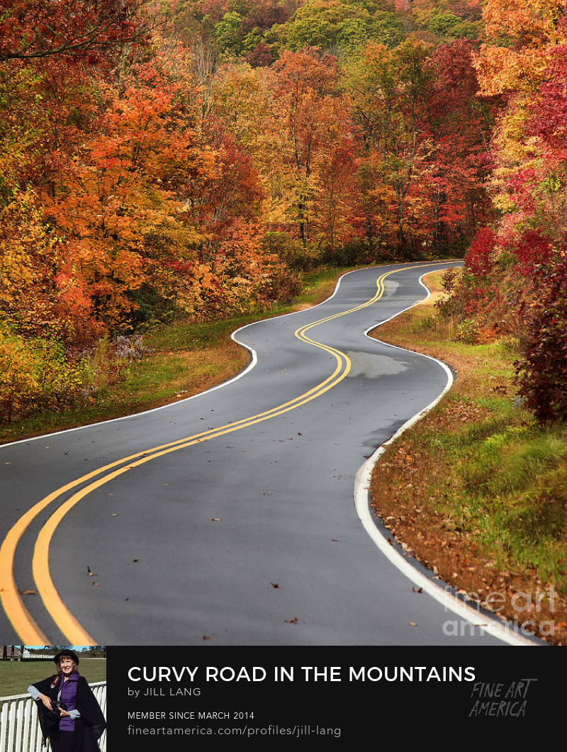 Curvy Road in the Fall