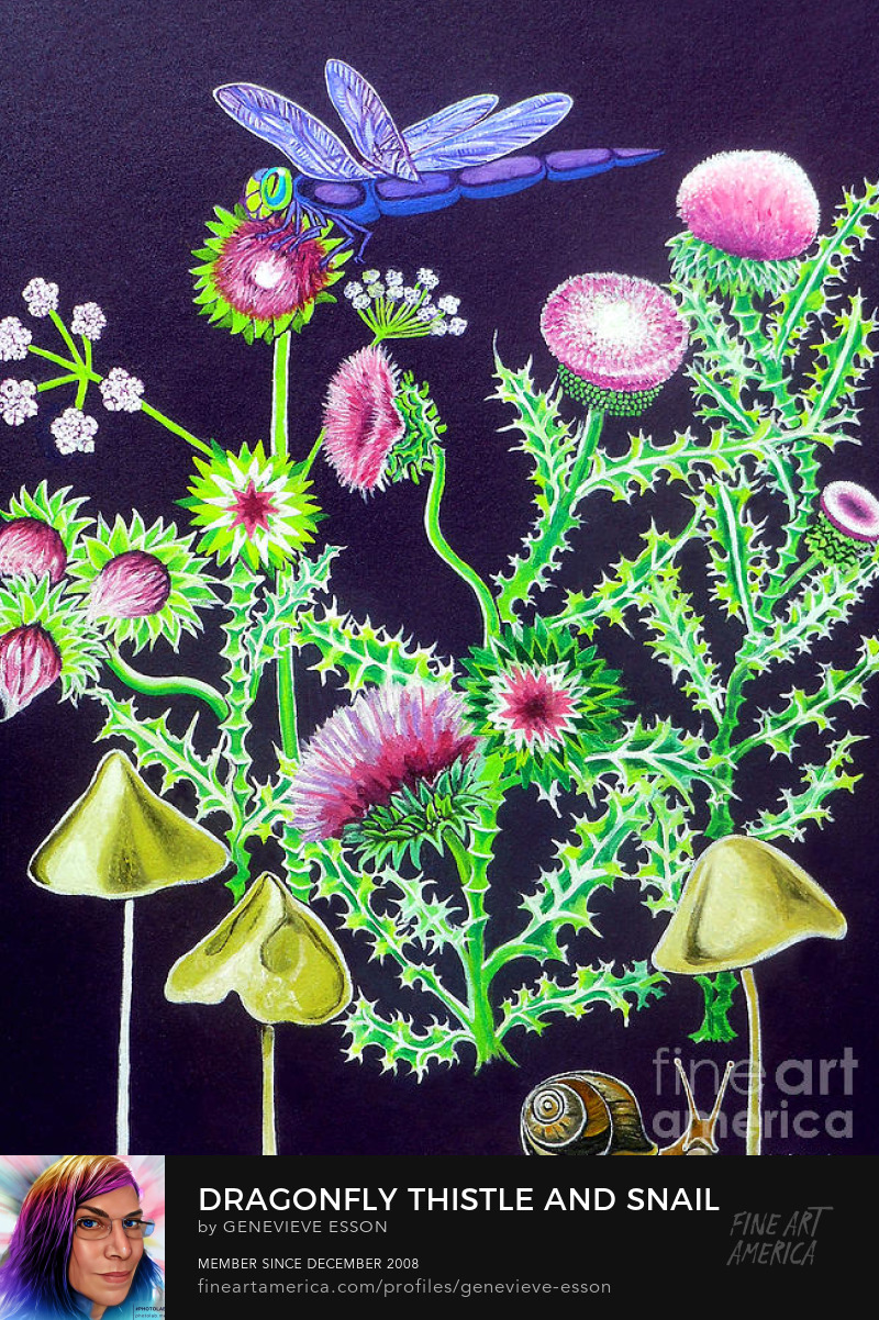 Dragonfly Thistle and Snail Sell Art Online