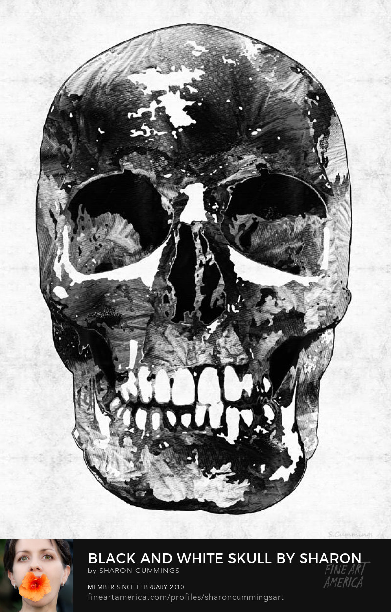 Black Skull Art