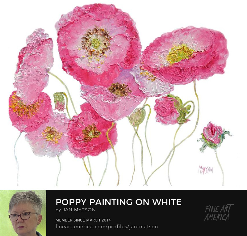 An oil painting of pink poppies on a white background.