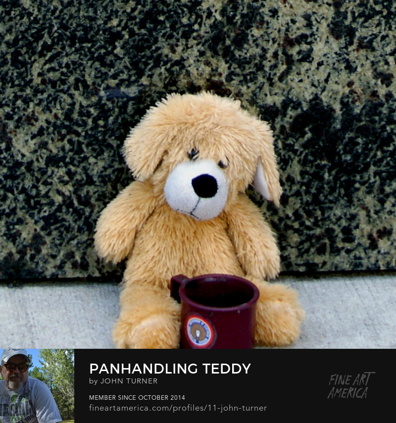 panhandling teddy bear new york city streets by john turner