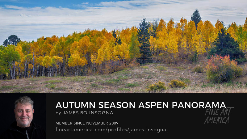 Autumn Season Aspen Panorama Scenic View Photography Prints