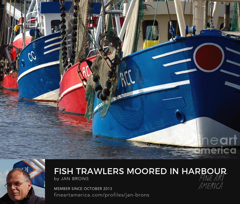Fish trawlers moored in harbour - Photography Prints