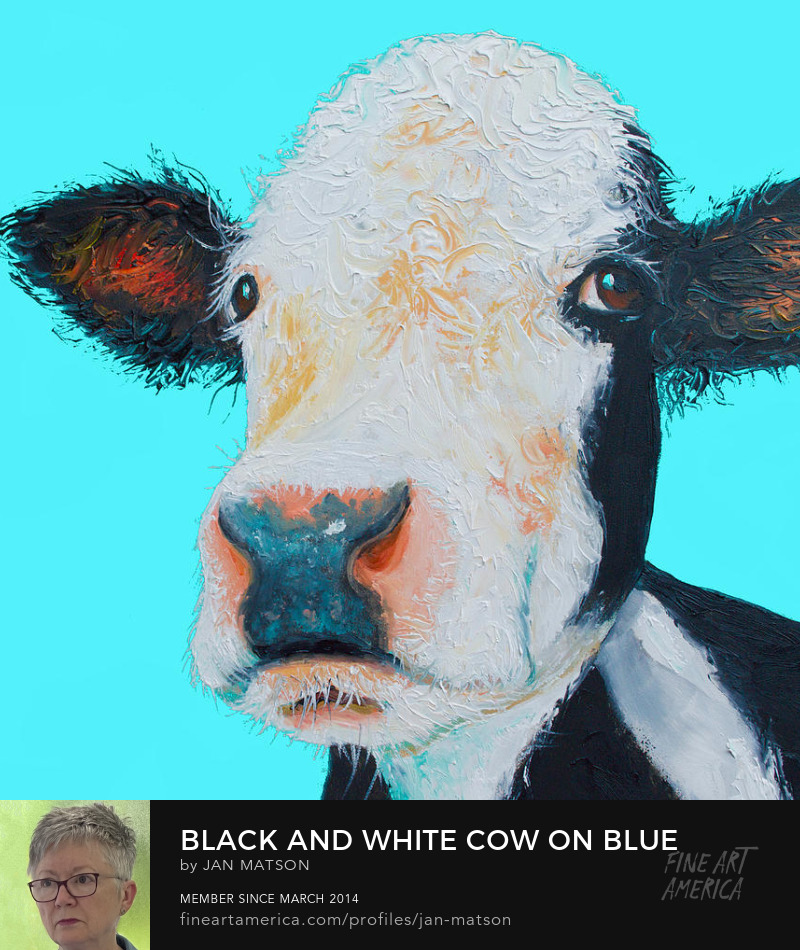 A thickly textured Black and white cow painting on a bright blue background.