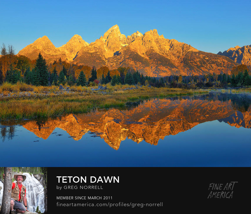 Dawn at Schwabacher Landing in Grand Teton National Park