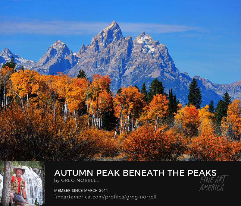 Autumn peak in Grand Teton National Park