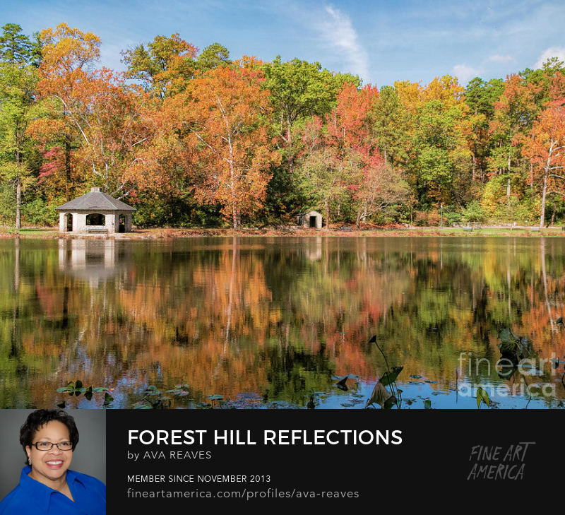 fall foliage reflected in lake at forest hill park