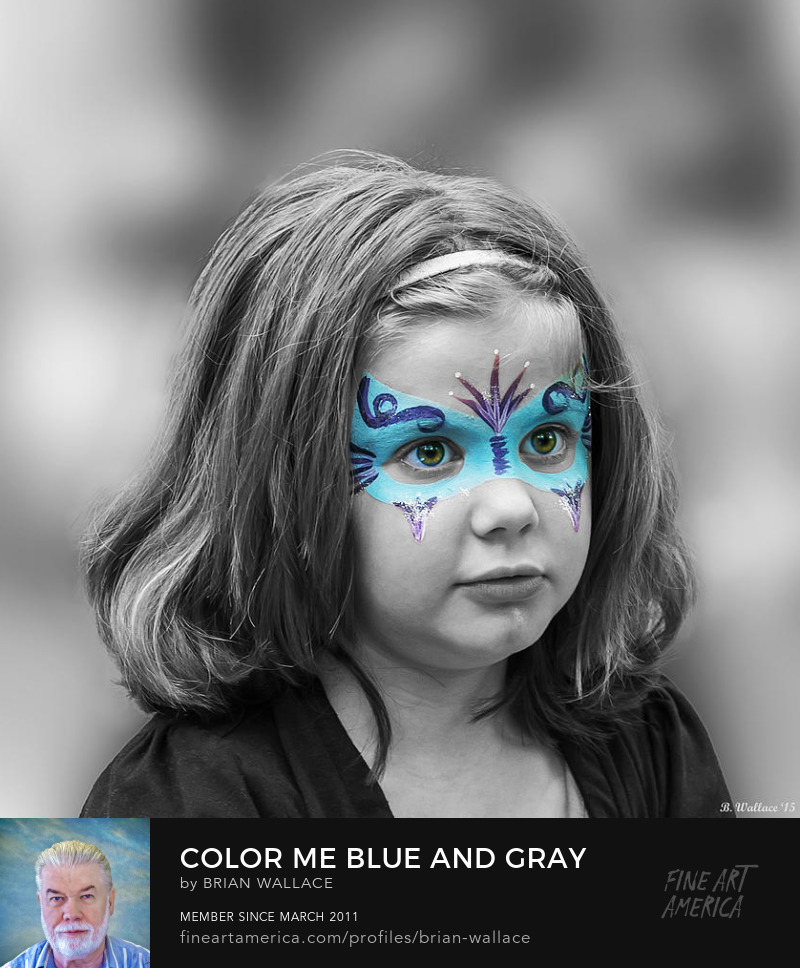 Color Me Blue And Gray by Brian Wallace