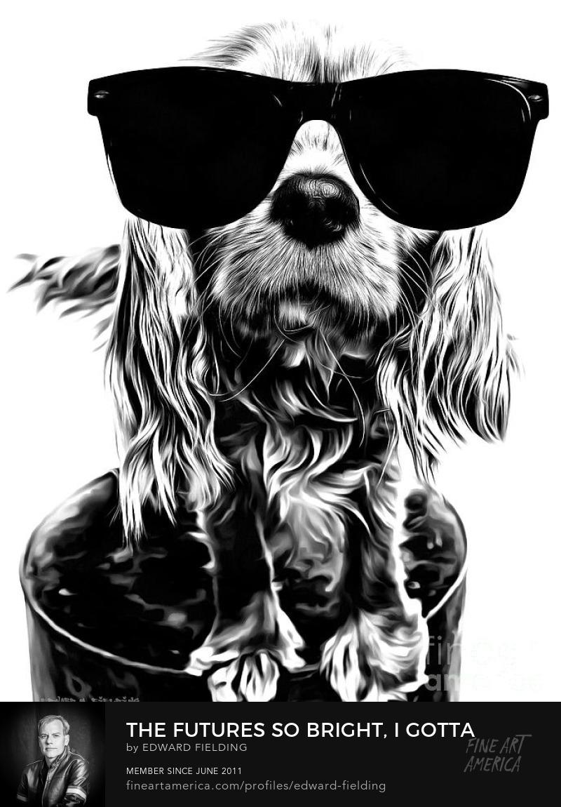 cute dog Photography Prints