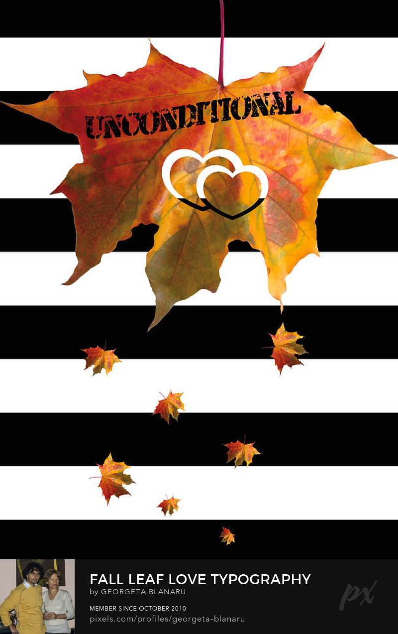 Fall Leaf Love Typography On Black and White Stripes Art Prints FineArtAmerica Pixels Store