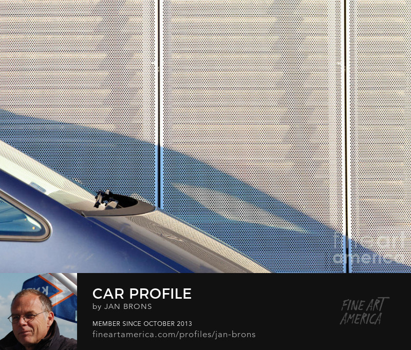 Car profile - Art Online