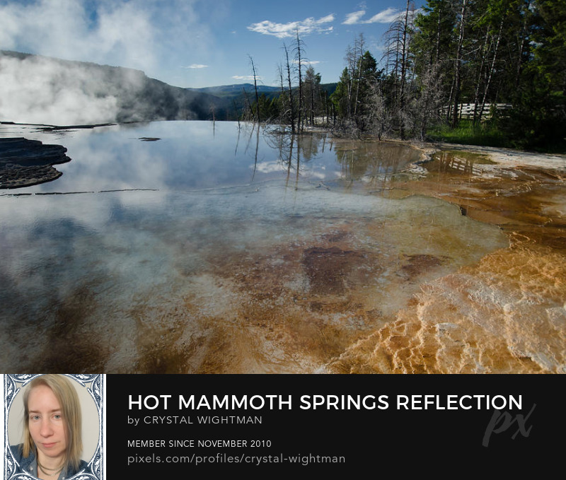 A Beautiful reflection of Hot Mammoth Springs in Yellowstone National Park by Crystal Wightman.