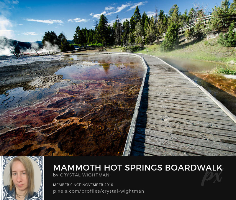 Mammoth Hot Springs boardwalk at Yellowstone National Park in Wyoming.