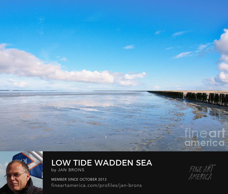 Low Tide Wadden Sea - Art Prints