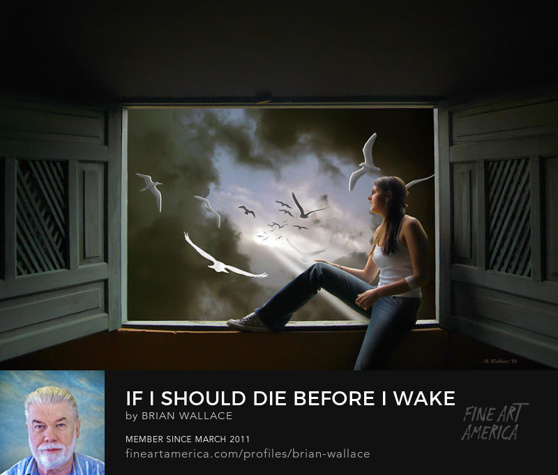 If I Should Die Before I Wake by Brian Wallace