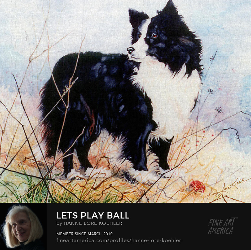 Painting Of a Border Collie
