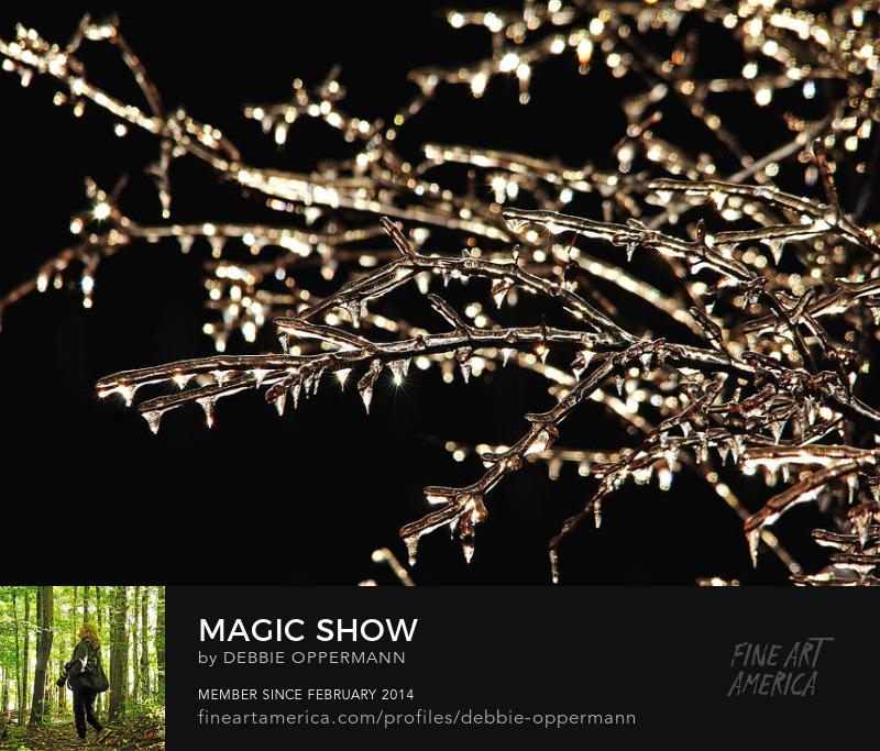 Magic Show by Debbie Oppermann