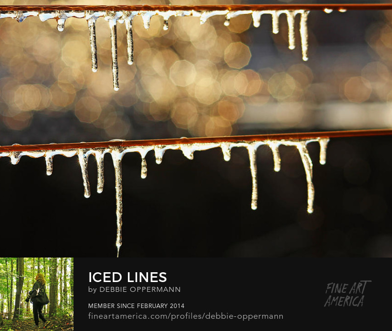 Iced Lines by Debbie Oppermann