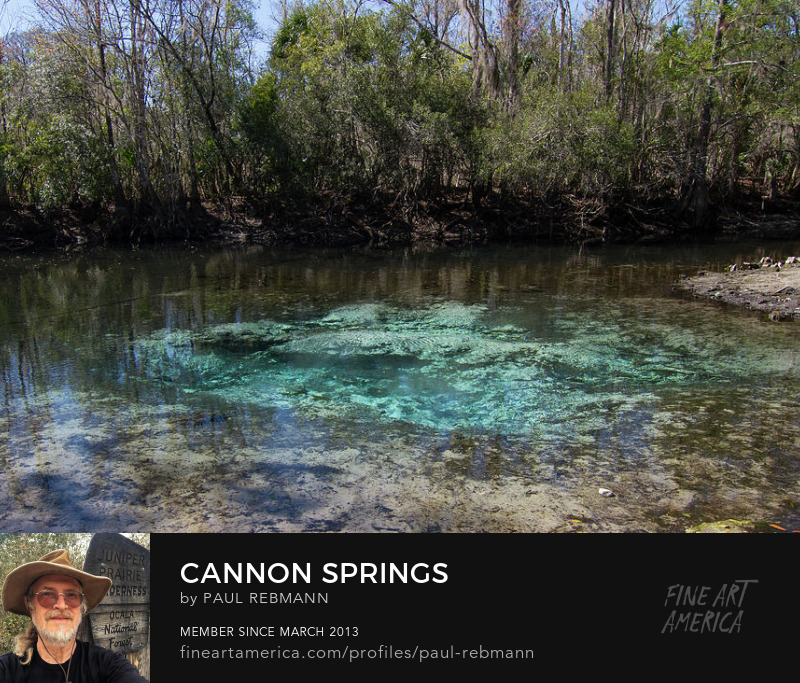 Cannon Springs by Paul Rebmann