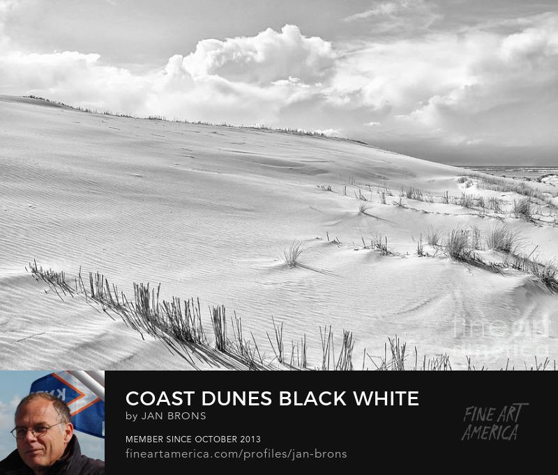 Coast Dunes Black White - Art Online