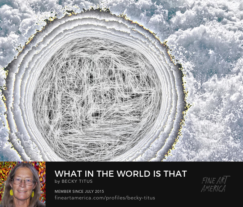 What In The World Is That? by Becky Titus' title=