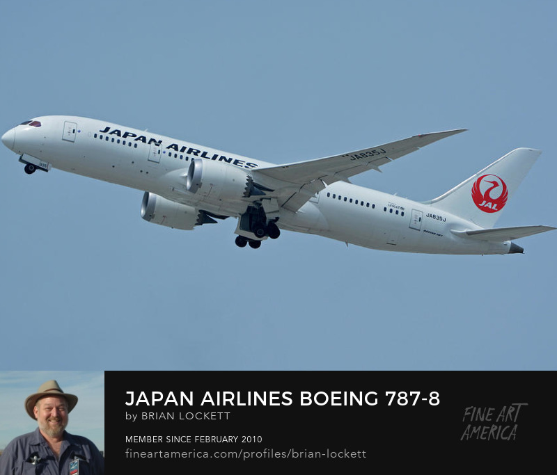 Japan Airlines Boeing 787-8 JA835J at Los Angeles International Airport on May 3, 2016, 2016