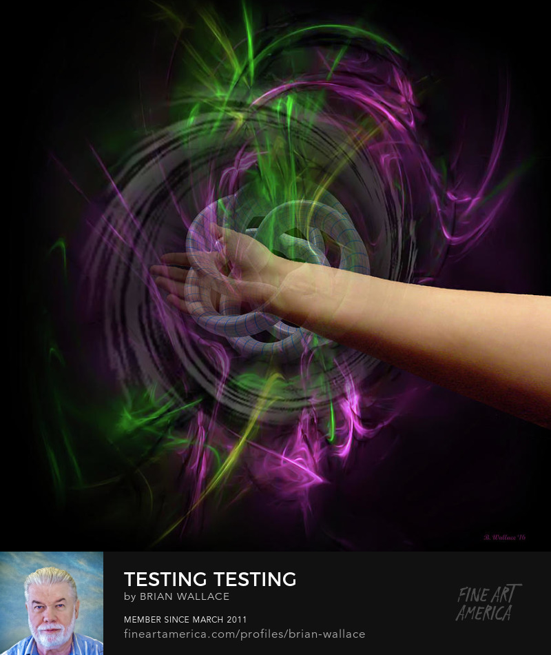 Testing Testing by Brian Wallace