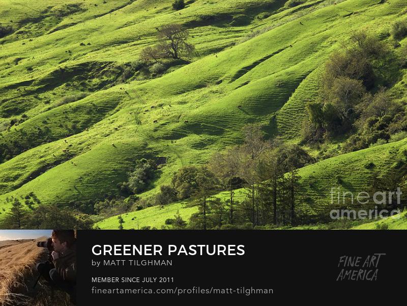 Andrew Molera State Park Photography Prints