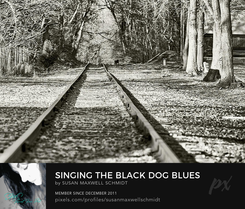 Singing the Black Dog Blues Photo Print by Susan Maxwell Schmidt