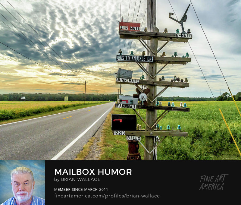 Mailbox Humor by Brian Wallace