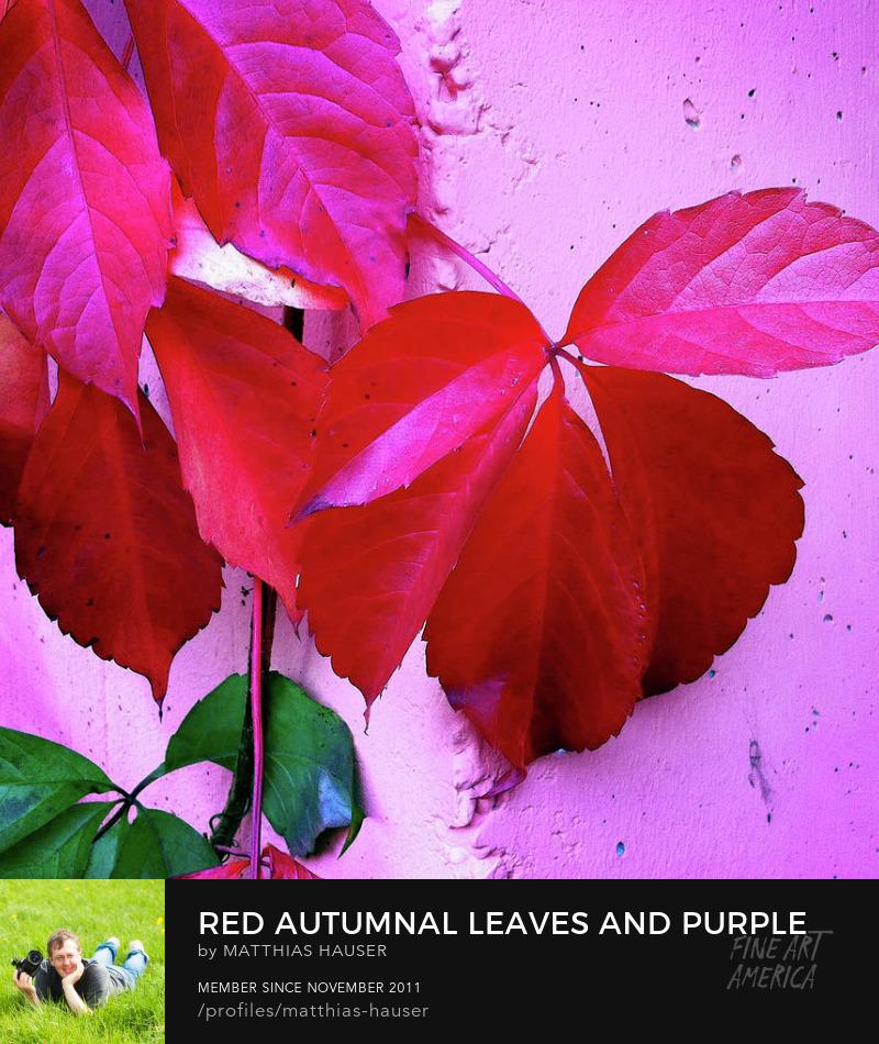 Autumn Art Online