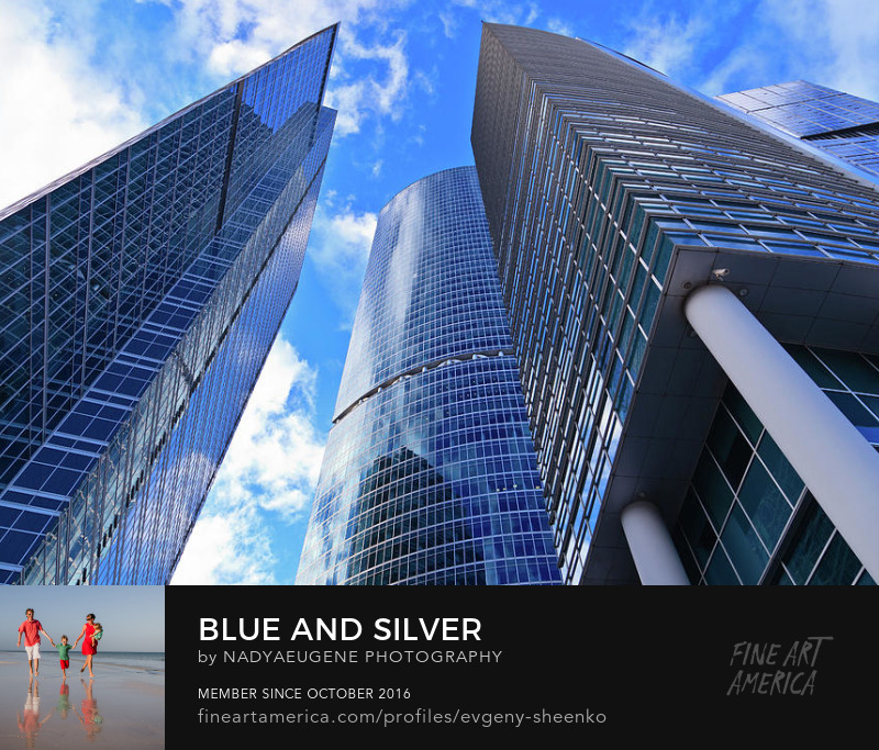 Blue and Silver by Nadya&Eugene Photography